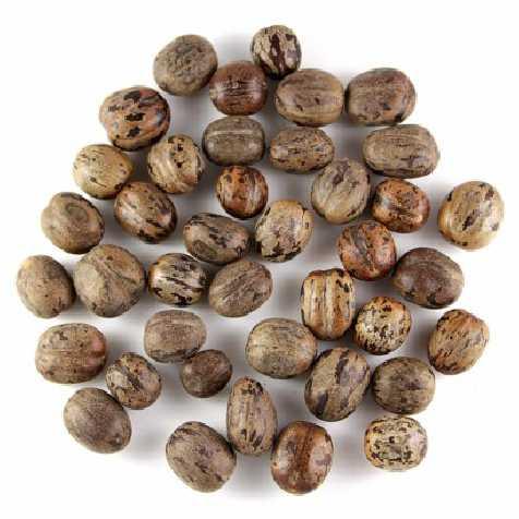 Graines décoratives lollota- 100 grammes
