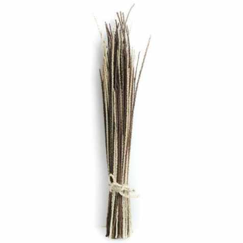 Branches d'acaï bicolores