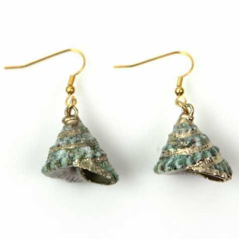 Boucles d'oreilles en coquillage trochus vert doré à l'or fin