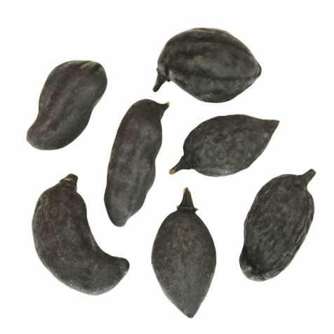 Fruits du baobab déco noirs - Lot de 3
