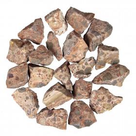 Pierres brutes jaspe léopard - 3 à 5 cm - 100 grammes