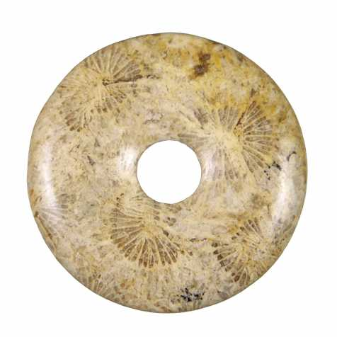 Donut Pi Chinois en corail fossilisé pour pendentif