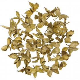 Cosses de coton - 250 grammes