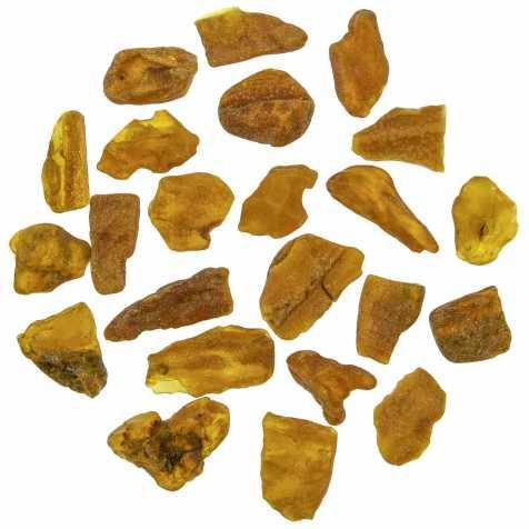 Pierres brutes ambre de Pologne - 2 à 3 cm - 5 grammes