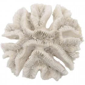 Bloc de corail fleur - 399 grammes