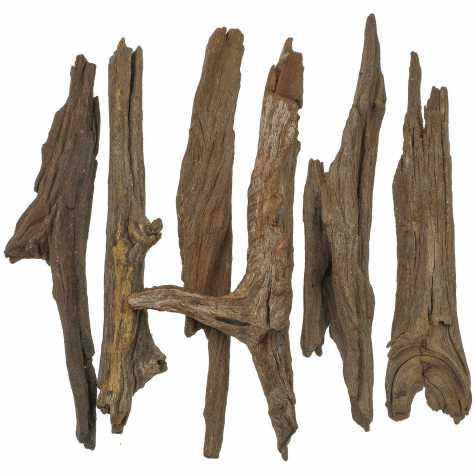 Petits bois flottés brun déco - 20 à 30 cm - Lot de 5