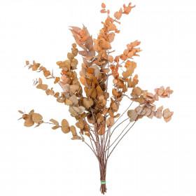 Feuillage d'eucalyptus stuartiana orange stabilisé - 70 cm
