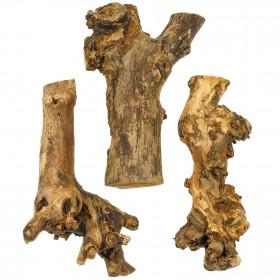 Bois de mûrier - 22 cm