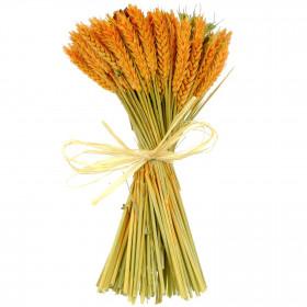 Bouquet de fleurs séchées composé orange - 30 cm