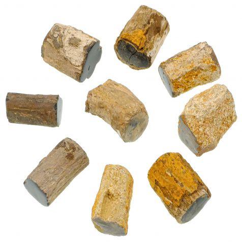 Pierres brutes bois fossilisé - 3.5 à 4 cm - A l'unité