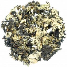 Lichen séché noir - 100 grammes